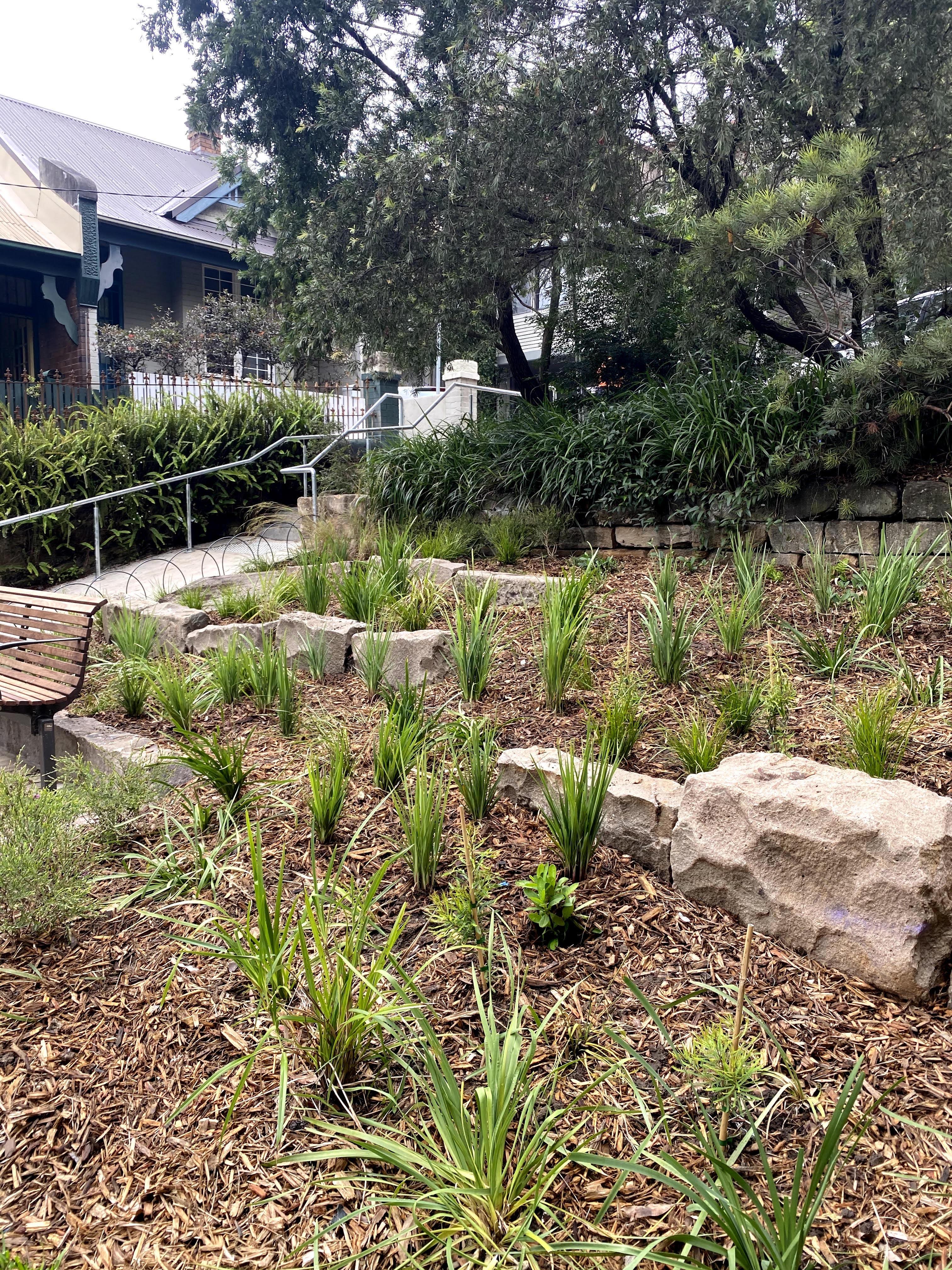 Palmerstown Steps - Copy